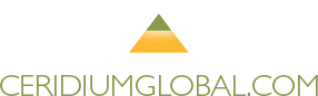 Big Island logo